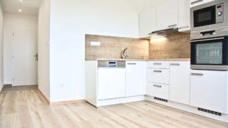 Byt 1+1, 44 m2, Brno, ul. Rerychova